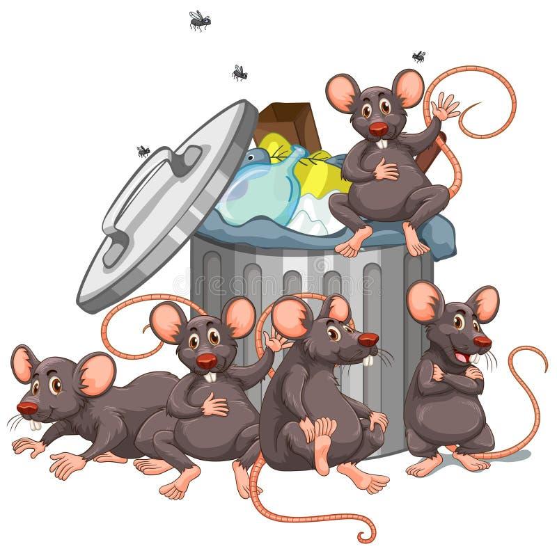 Cinco ratos que sentam-se pelo escaninho dos desperdícios ilustração stock