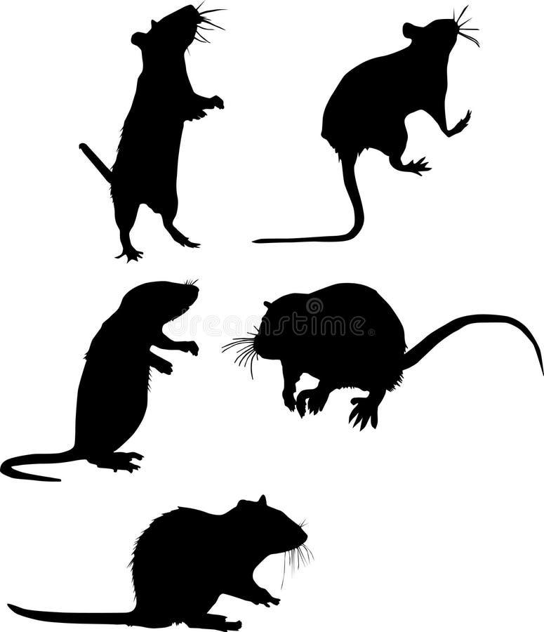 Cinco silhuetas do rato ilustração stock