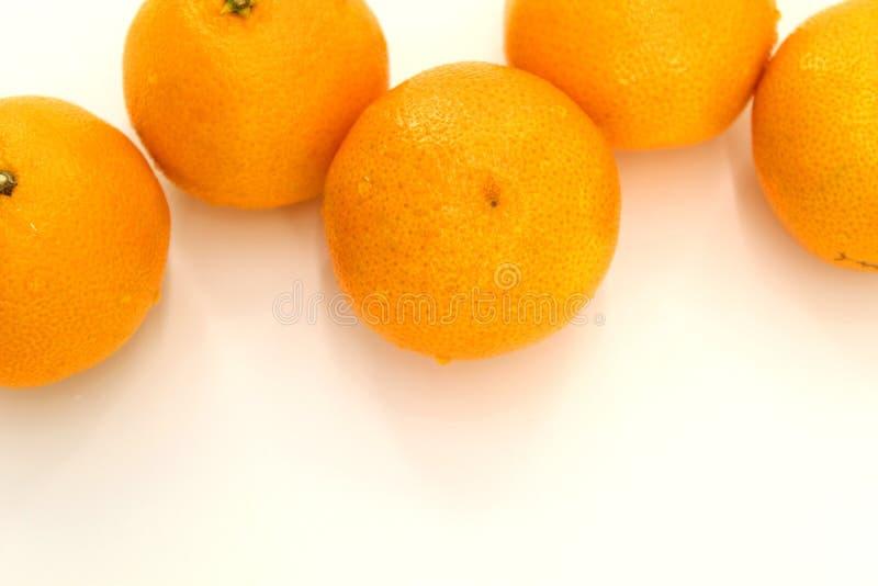 Cinco tangerinas de tamanho médio em um fundo branco fotos de stock royalty free
