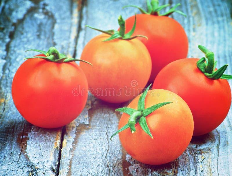 Cinco tomates de cereja imagens de stock royalty free