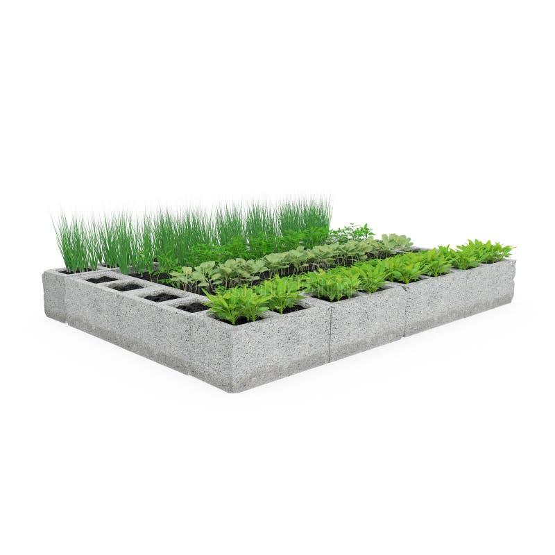 Cinder Block Garden op een wit 3D Illustratie stock illustratie