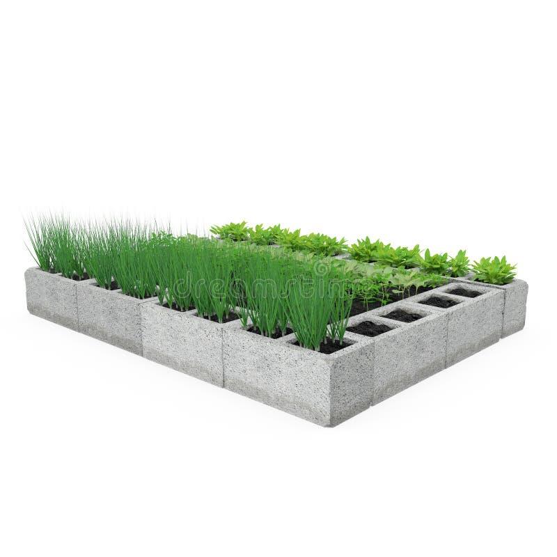 Cinder Block Garden op een wit 3D Illustratie royalty-vrije illustratie