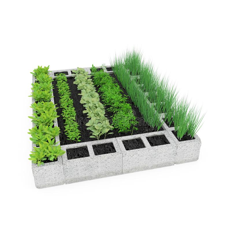 Cinder Block Garden op een wit 3D Illustratie vector illustratie
