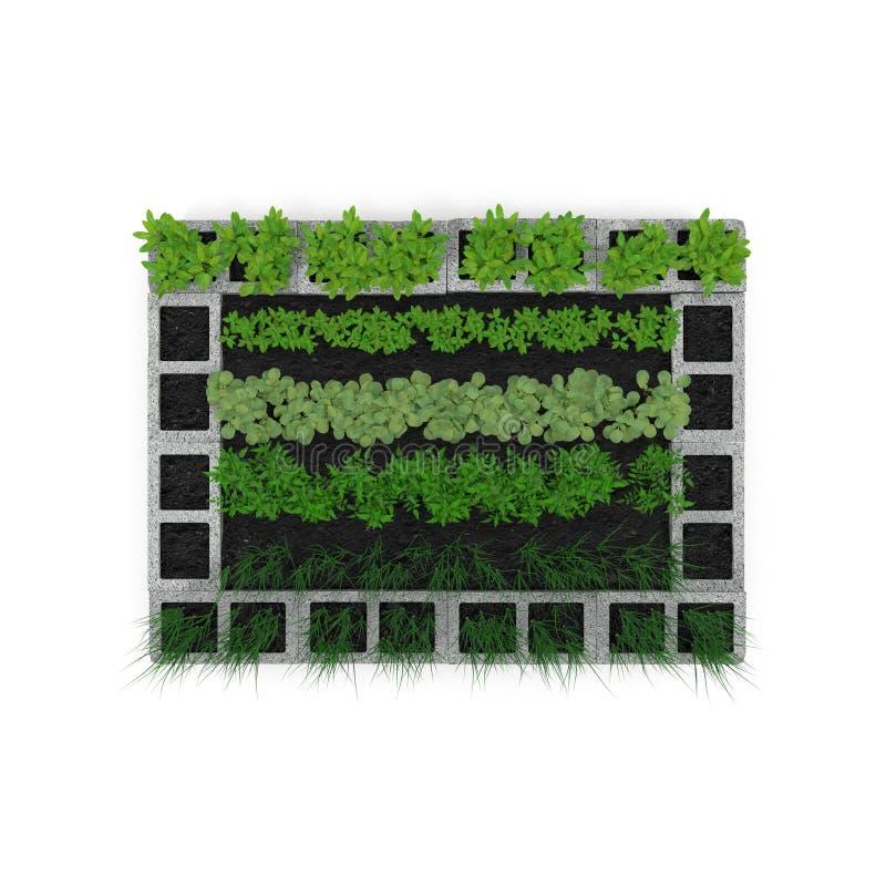 Cinder Block Garden op een wit Hoogste mening 3D Illustratie stock illustratie