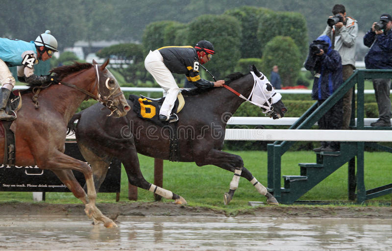 Download Cinder Cone Wins A Claiming Race Editorial Photo - Image: 15341356