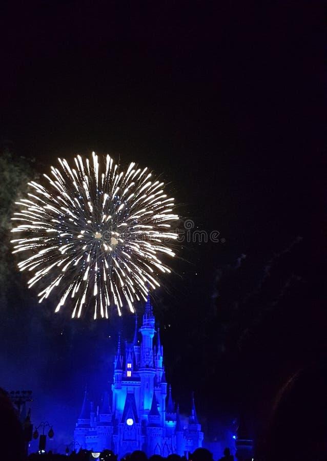 Cinderella Castle fotografia de stock
