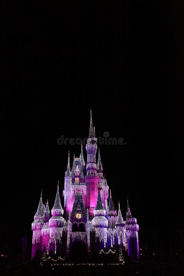Cinderella Castle Walt Disney Florida. Night time view of Cinderella's castle in Walt Disney Florida royalty free stock photography