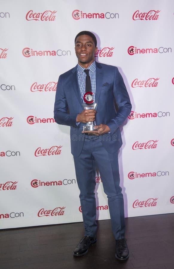 CinemaCon 2014 - de Grote Toekenning van de het Schermvoltooiing stock foto