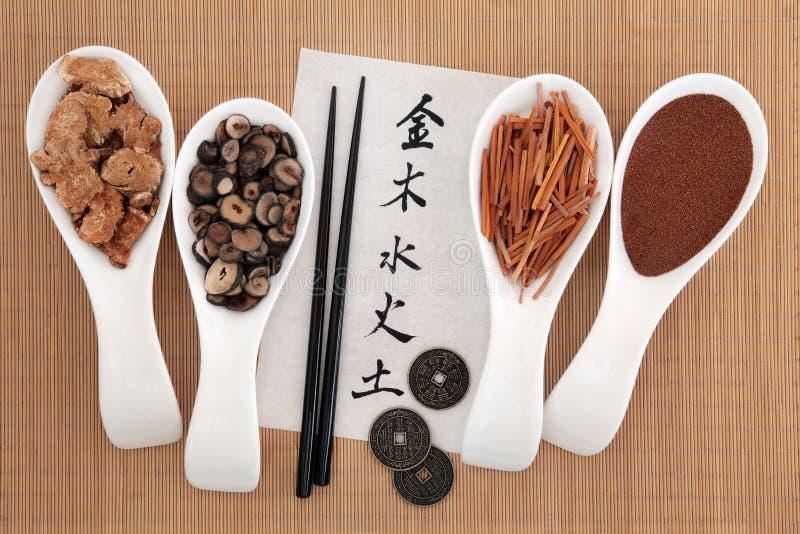 Cinese cinque elementi immagine stock