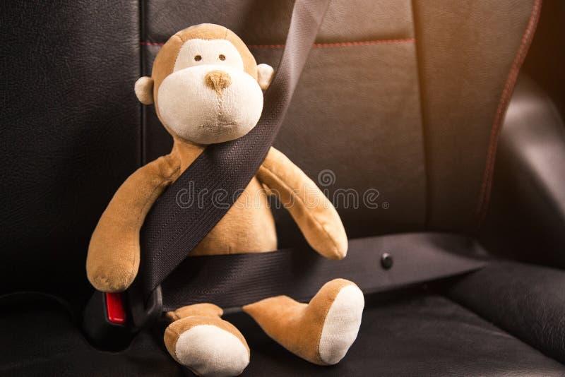Cinghia di seduta della scimmia nell'automobile immagine stock