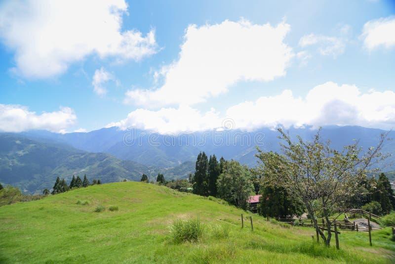 Cingjing gospodarstwo rolne przy Tajwan zdjęcie stock