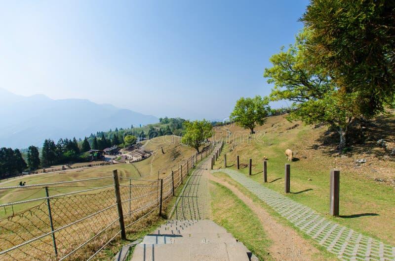 Cingjing lantgård i Nantou Taiwan royaltyfri foto