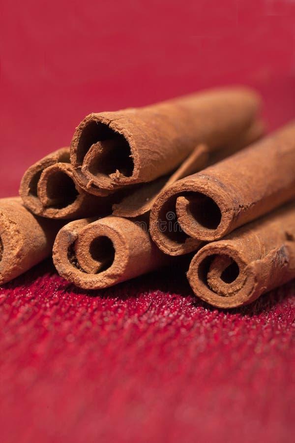 Download Cinnamon stock photo. Image of brown, holiday, christmas - 25589150