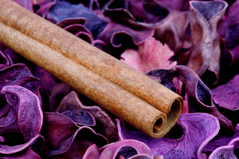 Cinnamon. And other color spices stock images
