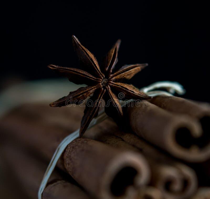 Cinnamon anis macro dark star spice broun aroma stick stock photo