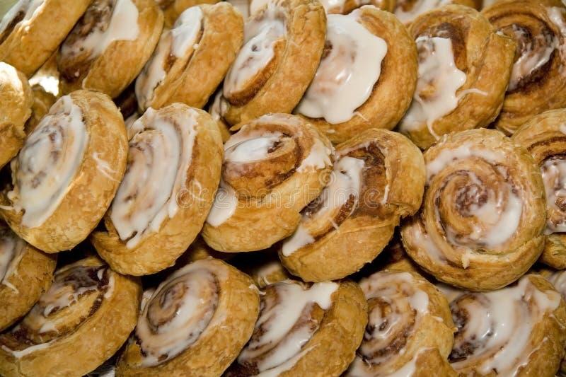 Cinnamon buns. Tray of freshly baked cinnamon buns royalty free stock photo