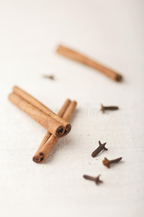 Download Cinnamon and cloves stock photo. Image of clove, cooking - 22765264