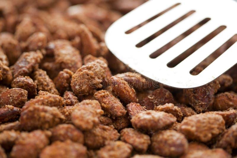 Download Cinnamon Glazed Almonds stock image. Image of almonds - 36771463