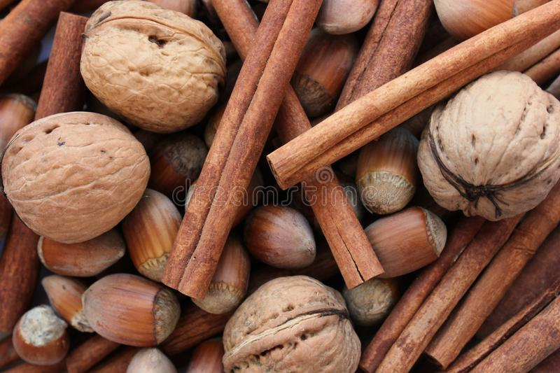 Cinnamon and nuts composition royalty free stock image
