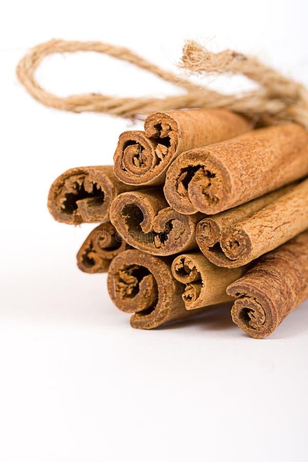 Cinnamon spicy sticks close-up royalty free stock photos