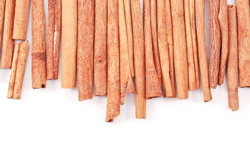 Download Cinnamon Sticks stock image. Image of nature, condiment - 22555175