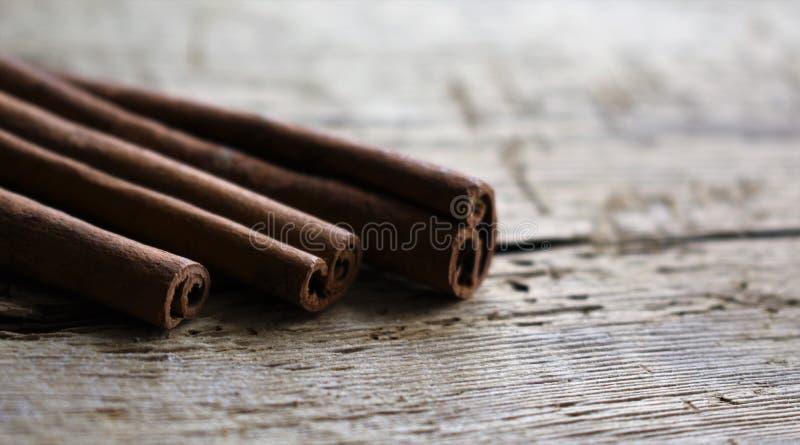 Cinnamon sticks aroma ingredient macro brown royalty free stock photos