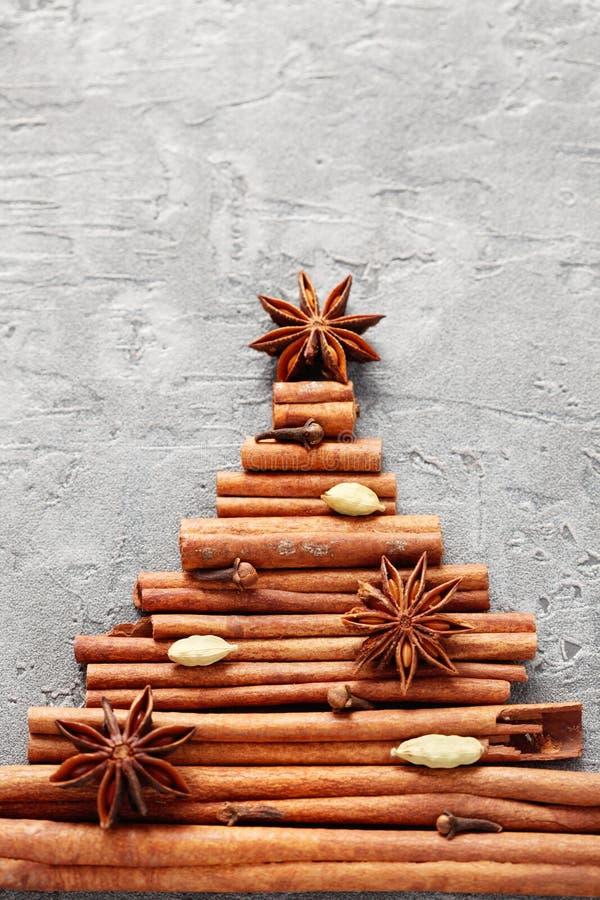 Cinnamon tree royalty free stock image