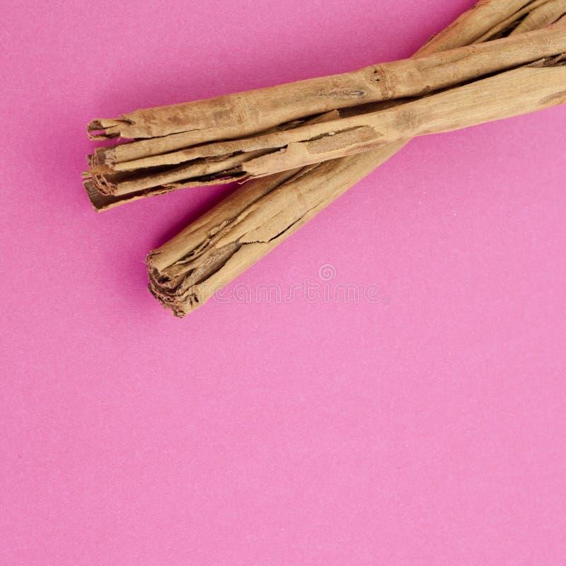 Download Cinnamon On Vibrant Pink Stock Photography - Image: 16798672