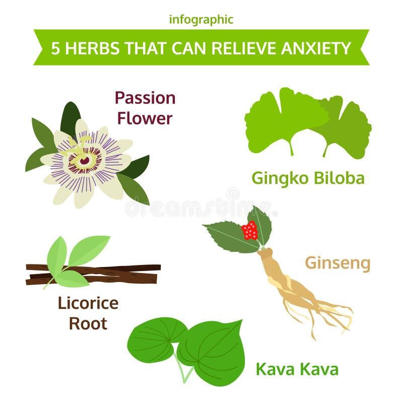Cinq herbes qui peuvent soulager l'inquiétude, icône d'herbe, illu de nourriture de vecteur illustration stock
