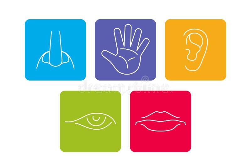 Cinq icônes de vecteur de sens réglées ont isolé le blanc illustration de vecteur