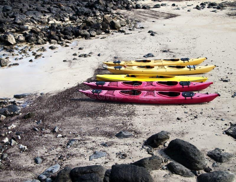 Cinq kayaks sur la plage images libres de droits