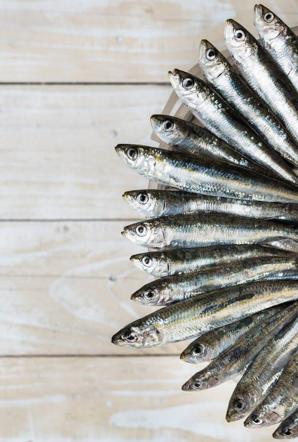 Cinq sardines image stock
