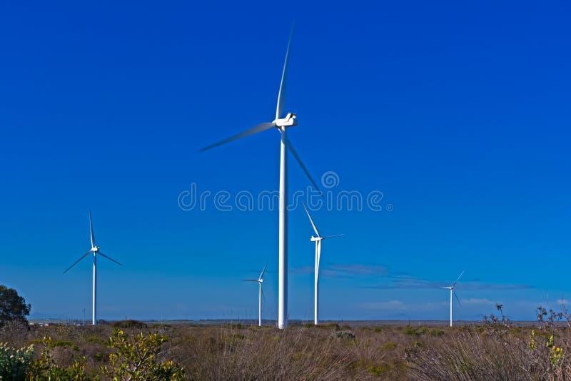 Cinq turbines de vent dans le domaine image libre de droits