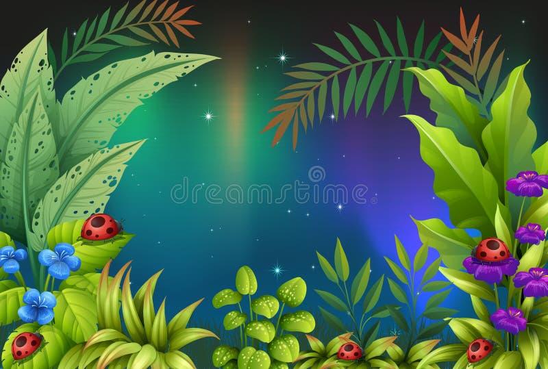 Cinque insetti in una foresta pluviale illustrazione vettoriale