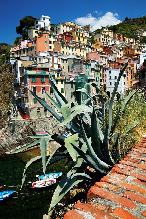 cinque Italy riomaggiore terre wioska fotografia stock