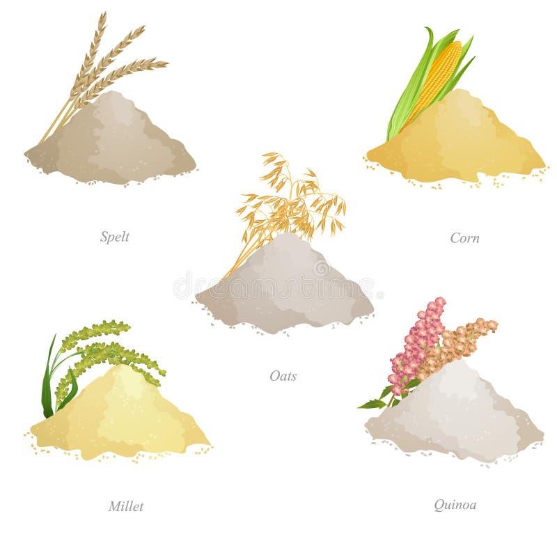 Cinque lotti con farina di cereali, le orecchie ed i nomi illustrazione di stock