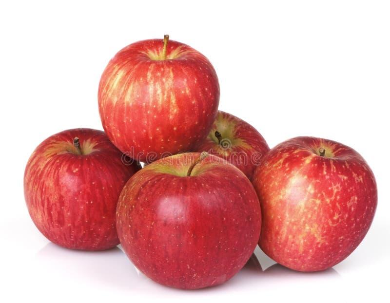 Cinque mele rosse immagini stock