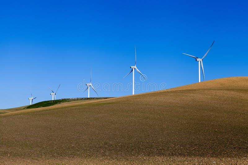Cinque mulini a vento sul campo del raccolto fotografie stock libere da diritti