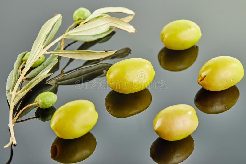 Cinque olive con il ramo di olivo con i frutti che si trovano su un fondo grigio fotografia stock libera da diritti