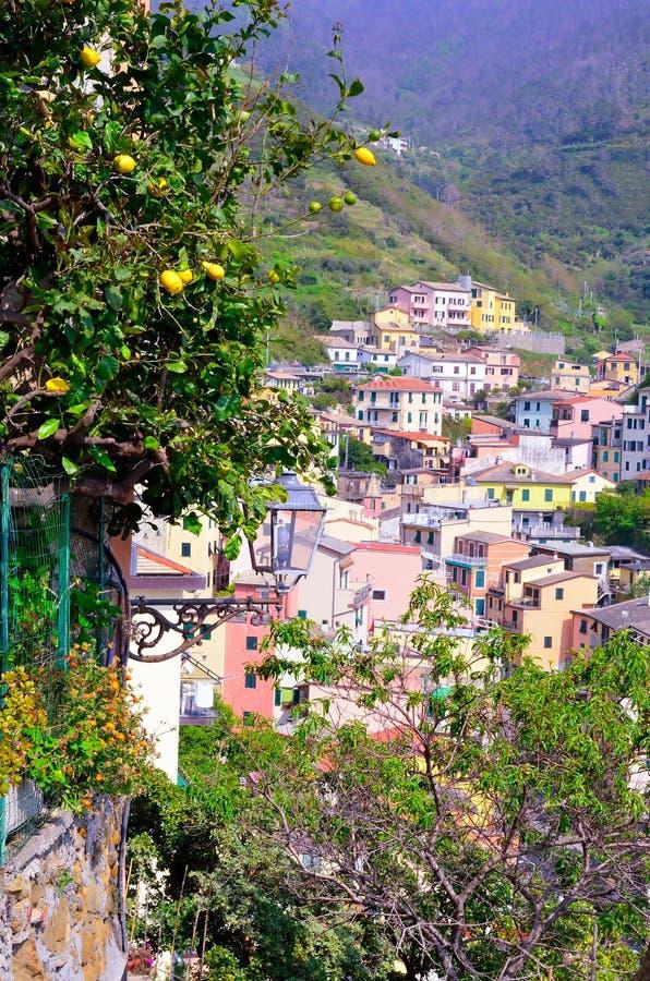 Cinque Terre, Италия стоковые фото
