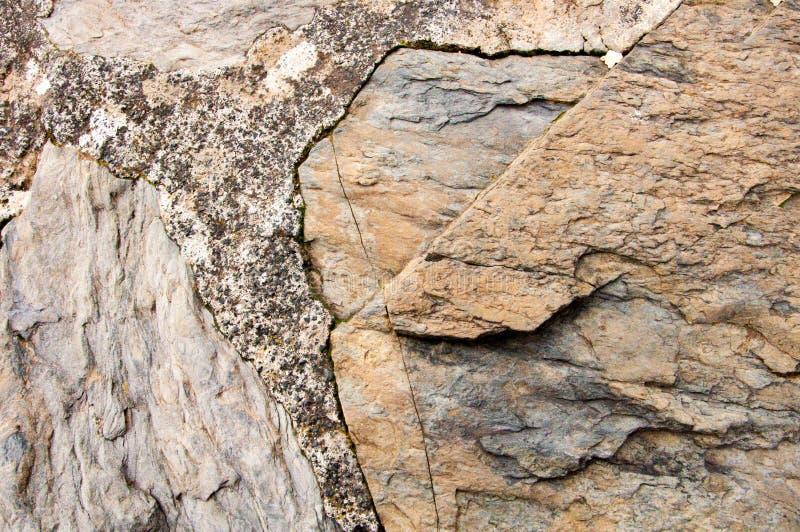 Cinque Terre Italy: Pedra típica da parede fotos de stock