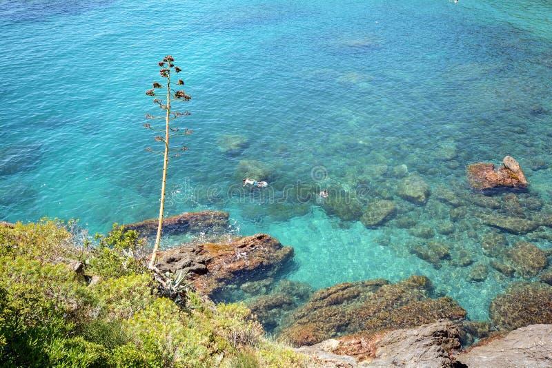 Cinque Terre: Litoral rochoso com a praia perto da égua do al de Monterosso da vila, Liguria Itália fotografia de stock