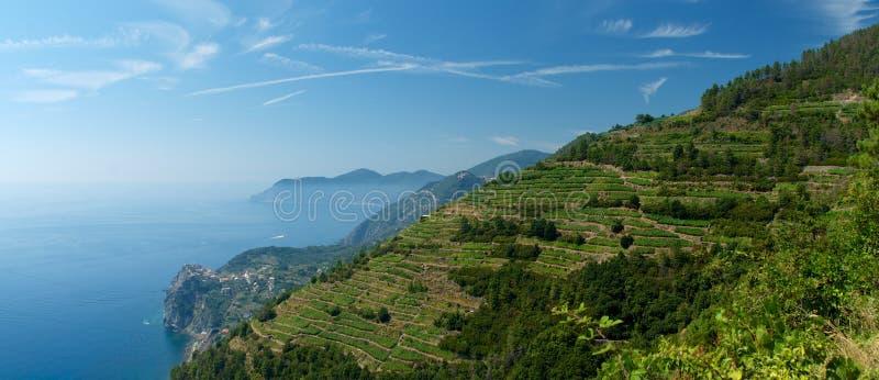Cinque Terre Panoramiczny obraz stock