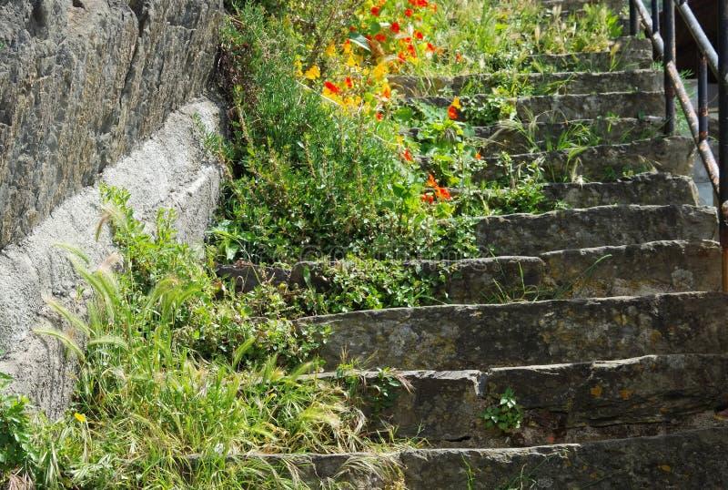 Cinque Terre Riomaggiore-Treppe lizenzfreie stockbilder