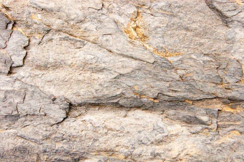 Cinque Terre W?ochy: Typowy ?ciana kamie? zdjęcie royalty free