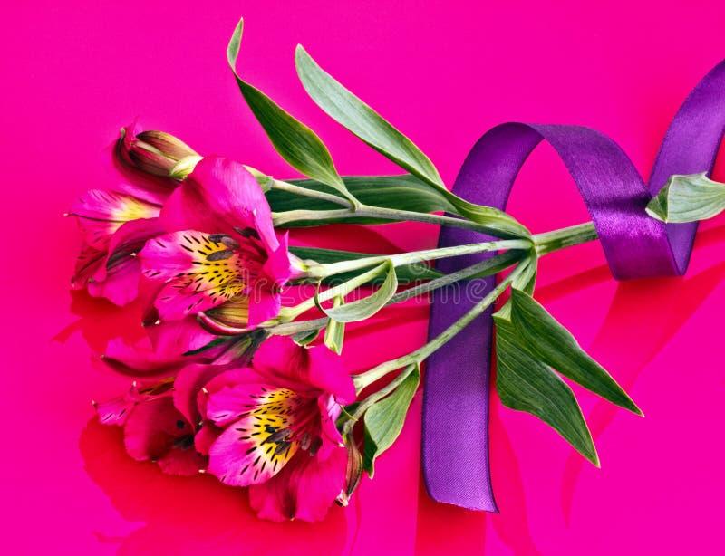 Cinta En La Flor Del Alstroemeria Imágenes de archivo libres de regalías