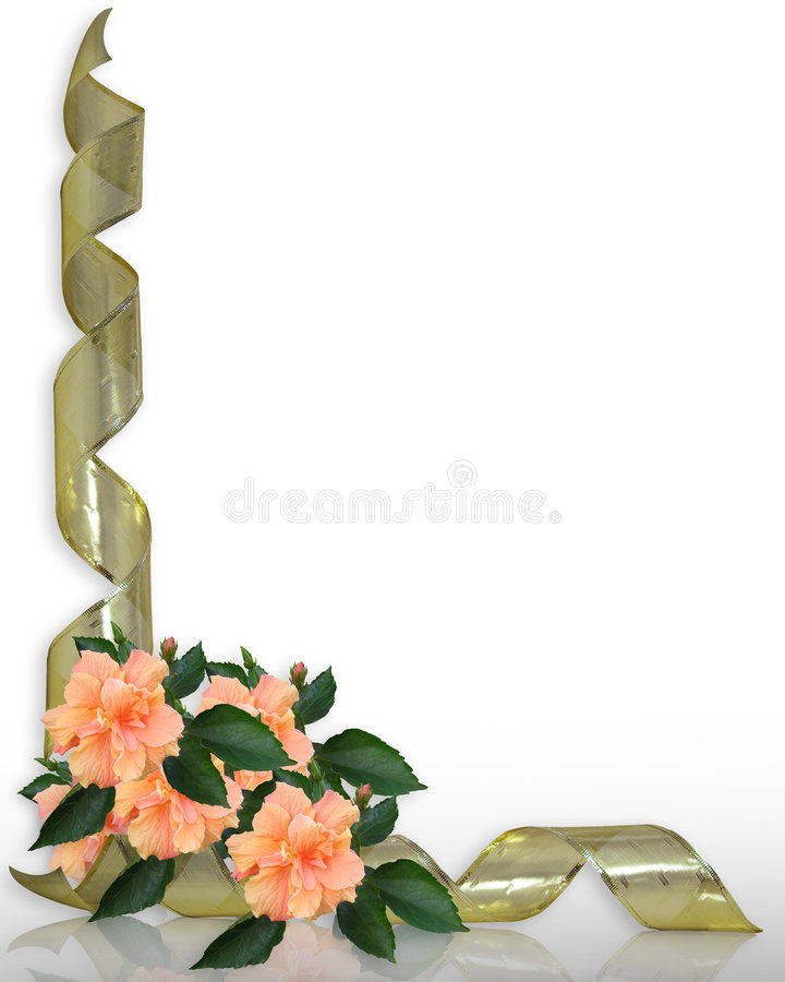 Cintas florales del hibisco y del oro de la frontera stock de ilustración