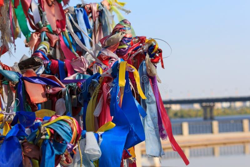 Cintas multicoloras atadas en el árbol imagen de archivo