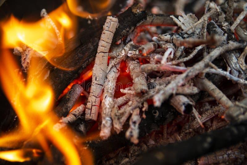 Cinza ardente do fogo na grade na floresta imagem de stock