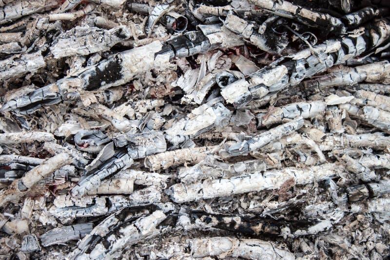 Cinza de carvão e de madeira imagens de stock